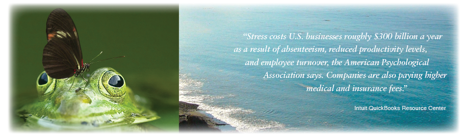 frog with black butterfly on head and ocean with quote about employee wellness